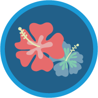 Salesforce Ohana Culture badge