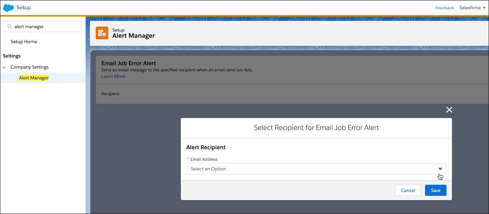 Select Recipient for Email Job Error Alert dropdown on the Alert Manager Setup page.