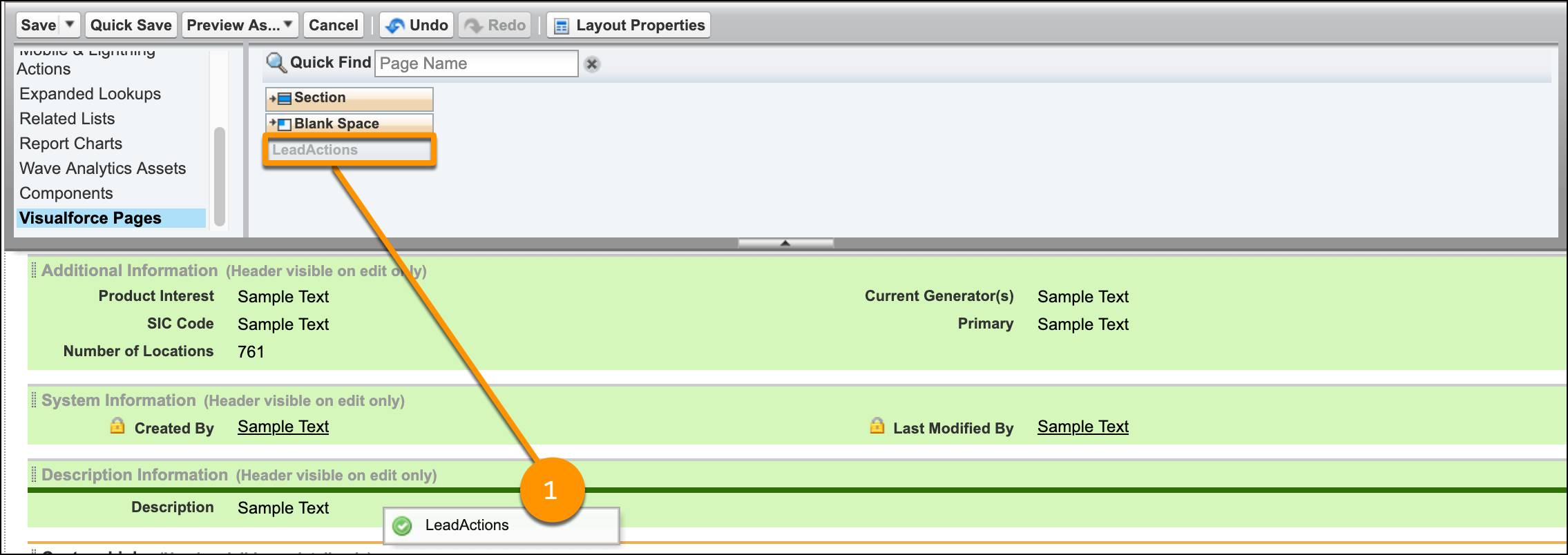 The Visualforce page LeadActions is highlighted, showing it dragged to the Lead page under Description Information.