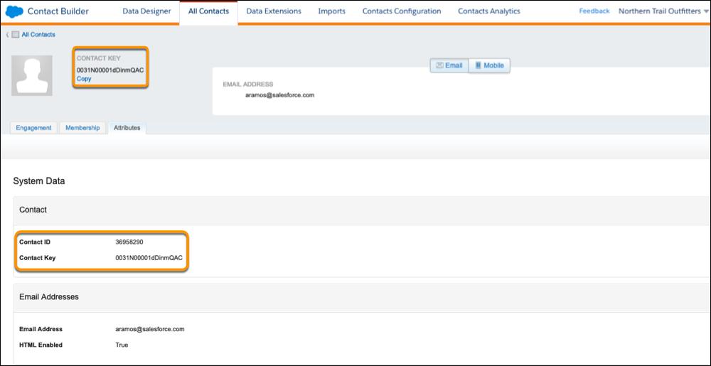 Un registro de contacto con el Id. de contacto y la clave de contacto resaltados.