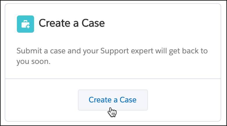 Create a case button selected.
