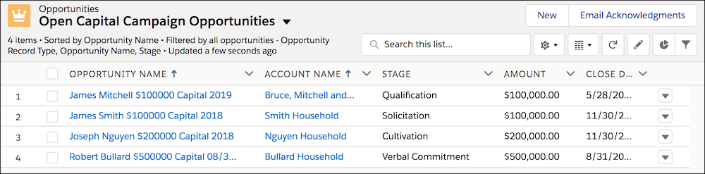 The List View, filtered to a segment Opportunities