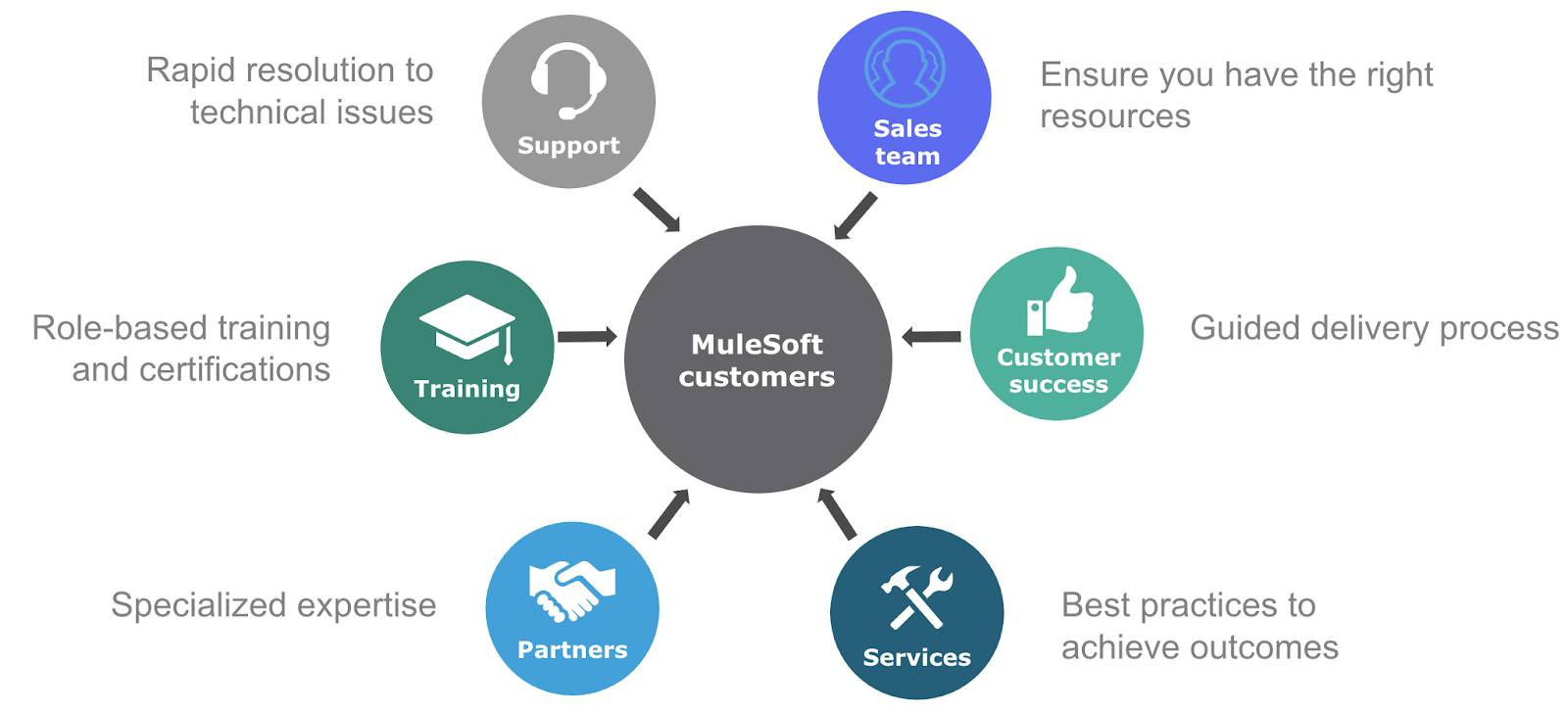 Catalyst ecosystem of Support, Training, Sales team, Customer Success, Services, and Partners