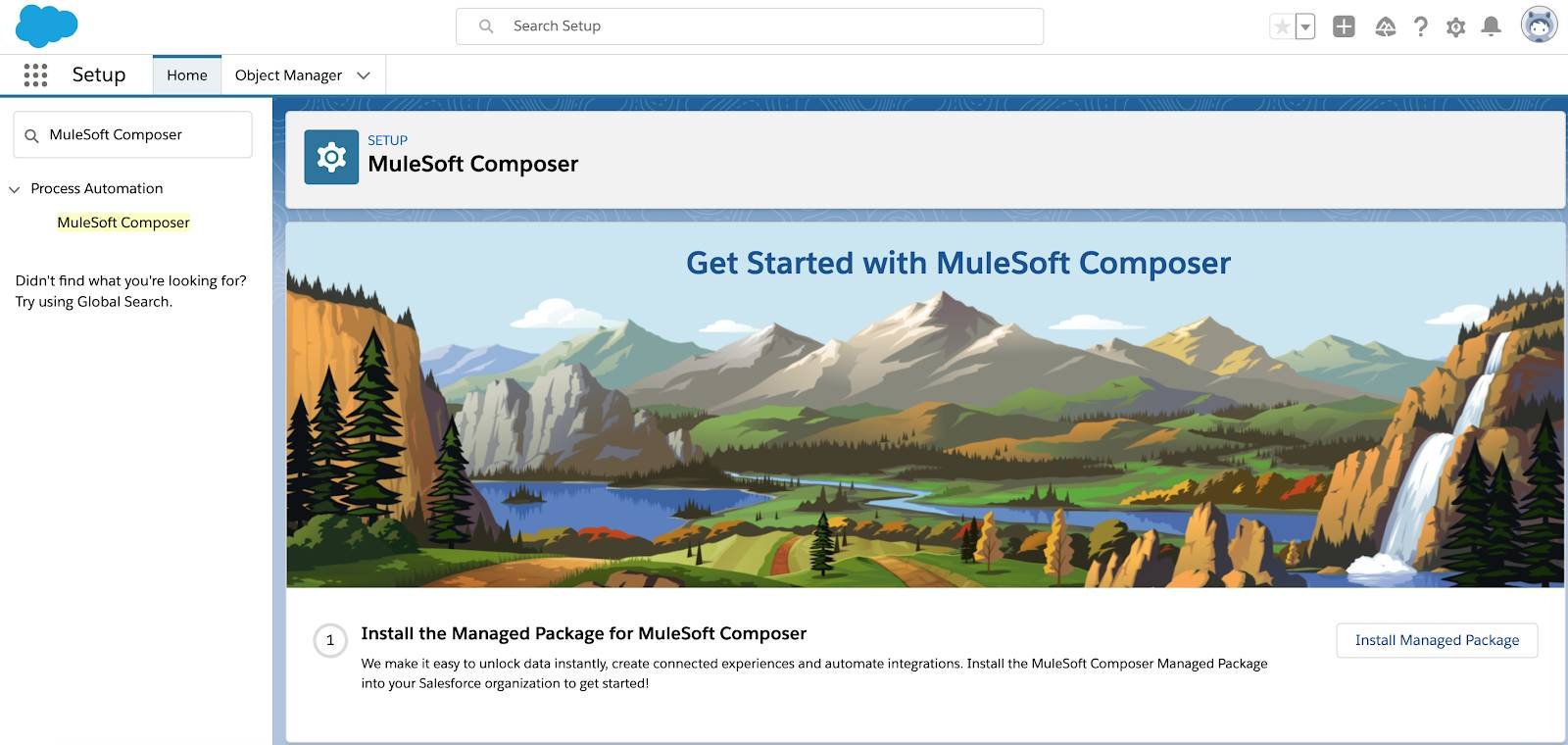 MuleSoft Composer Setup page with mountains, river, and waterfall