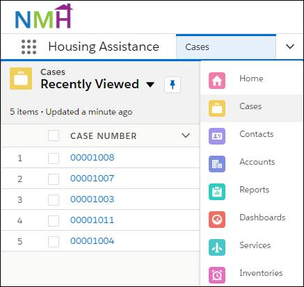 Object selector within the navigation bar of the NMH custom app