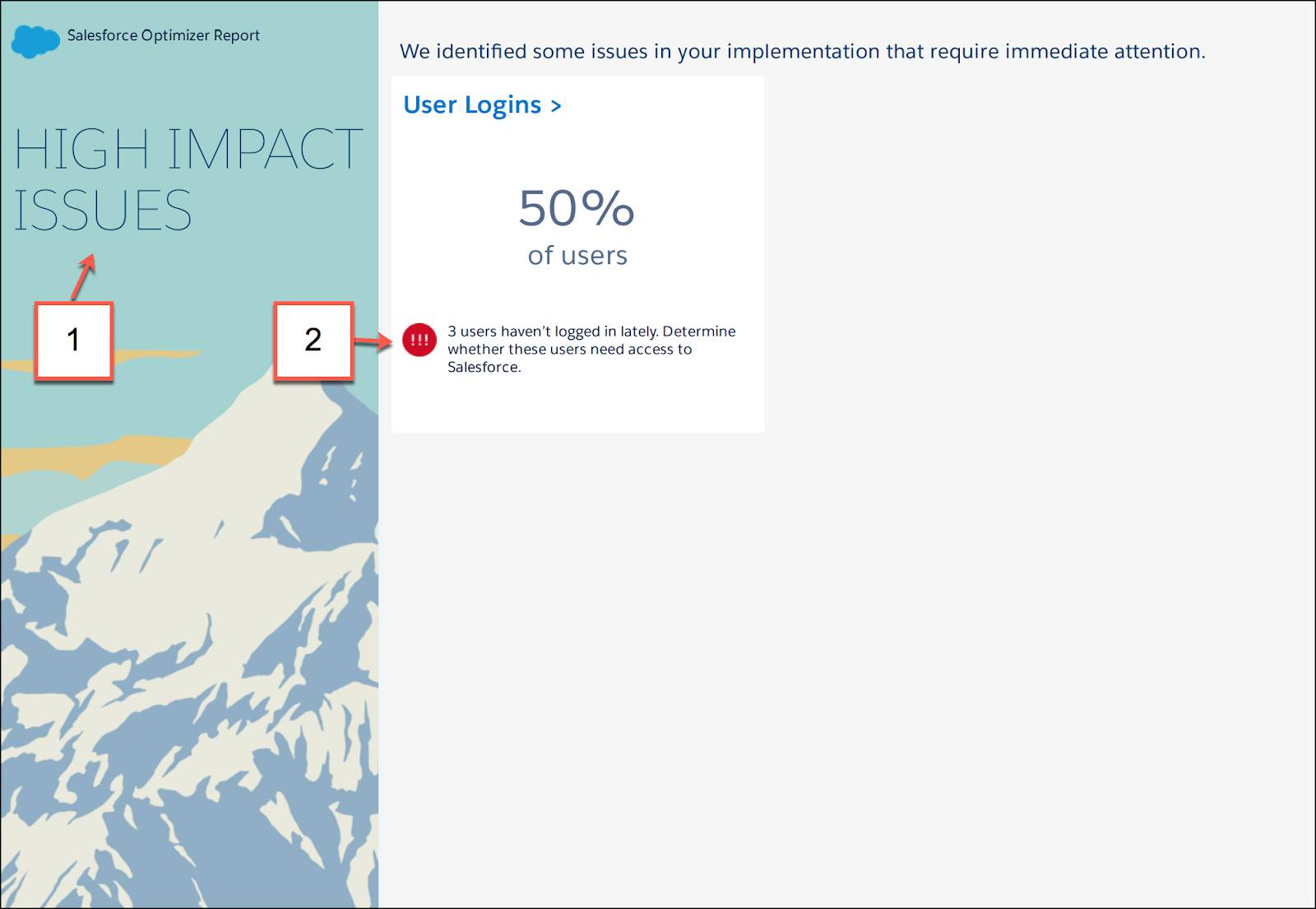 Highlights and high impact issues found by Salesforce Optimizer