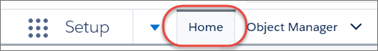 The Home tab in Setup, highlighted