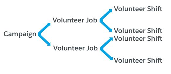 Volunteer management structure