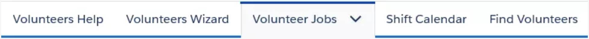 V4S tabs that appear after selecting the Volunteers application.