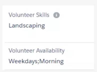 Captura de tela de Habilidades do voluntário e Disponibilidade do voluntário atualizados.