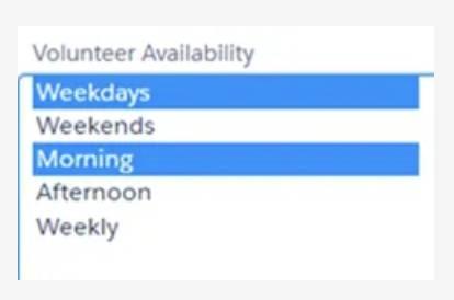 Captura de tela do campo Disponibilidade do voluntário.
