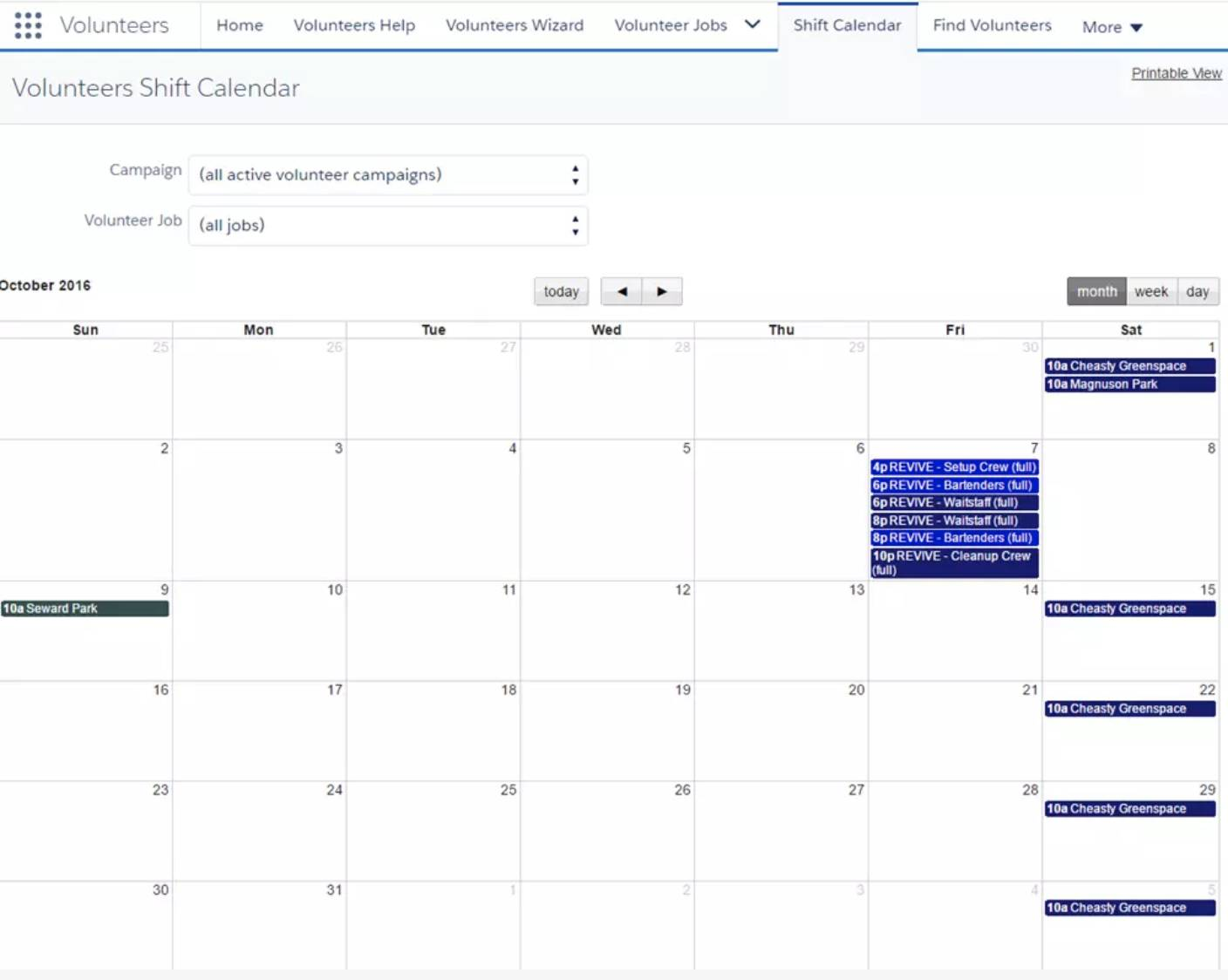 Screenshot of Volunteers Shift Calendar.
