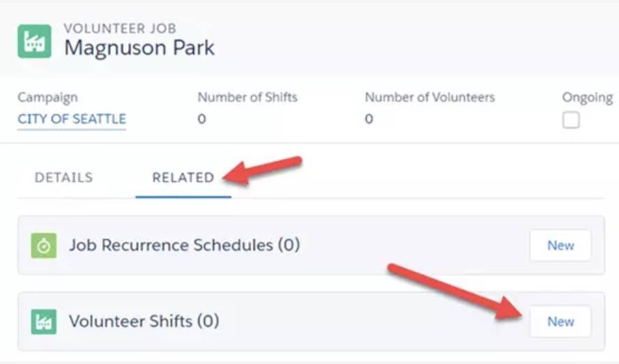 Captura de tela da criação do turno voluntário.