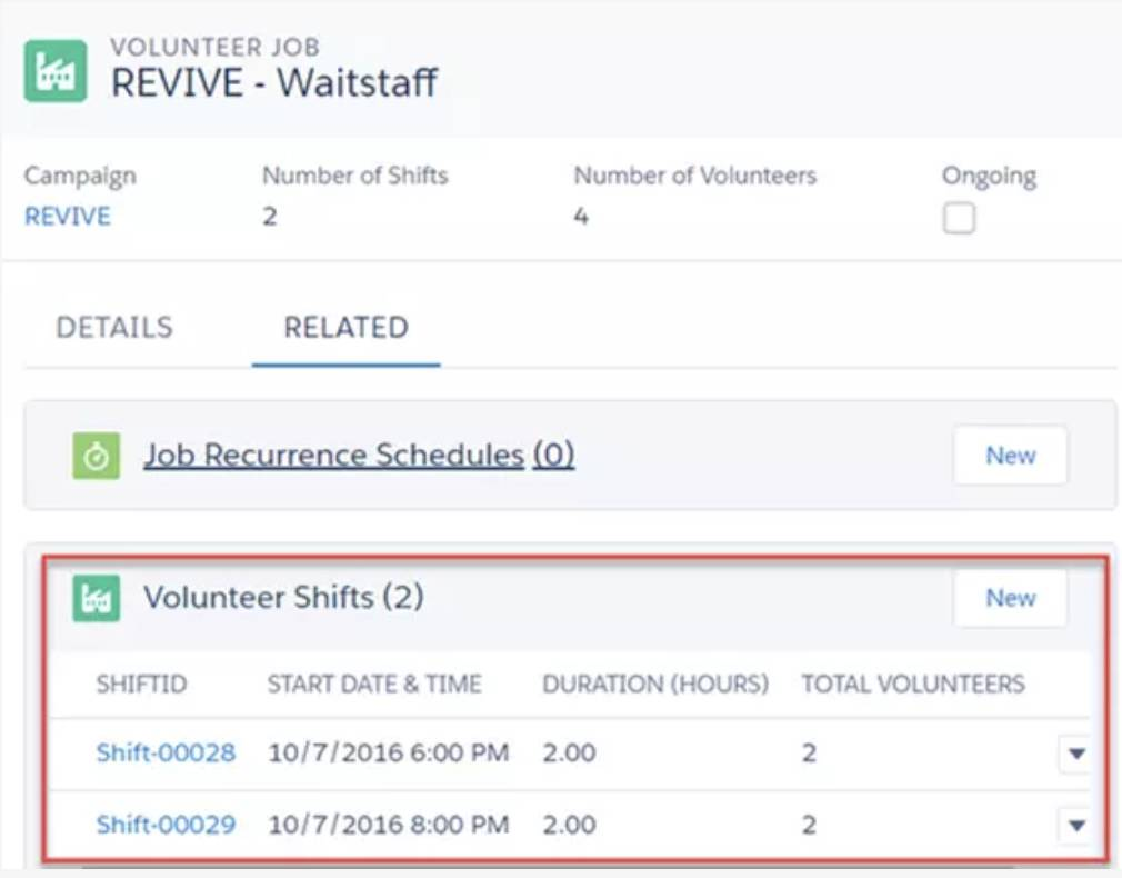 Screenshot of newly created Volunteer Shifts.