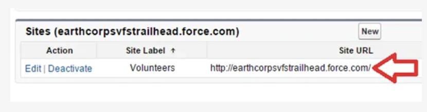 Capture d'écran de l'URL du site.