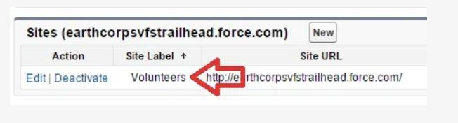 Captura de tela da etiqueta de site de seu site Voluntários.