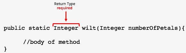 public static Integer wilt (Integer numberOfPetals){ //body of method}