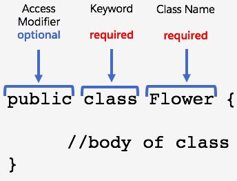 public class Flower { //body of class }