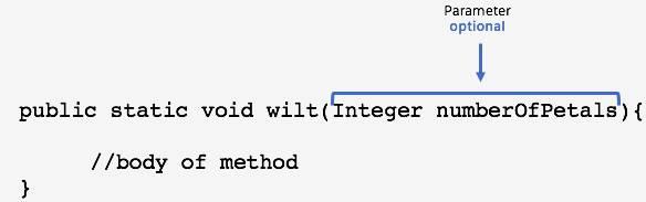 <p>public static void wilt (Integer numberOfPetals){</p><p> //body of method</p><p>}</p>