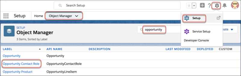 Opportunity Contact Role menu item in the Setup Object Manager