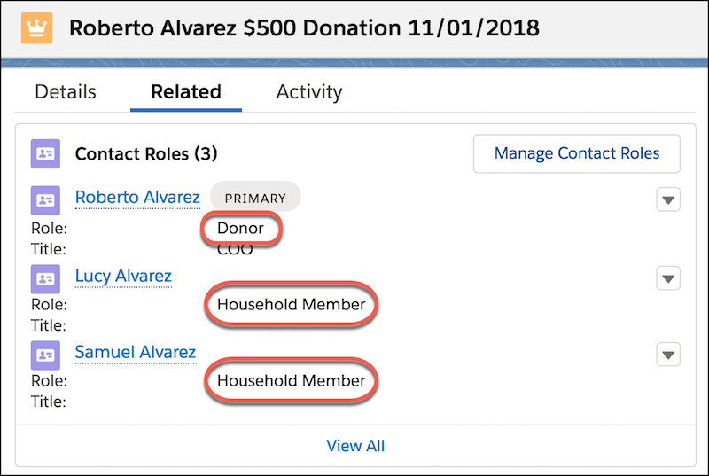 Related contact roles on the opportunity detail record