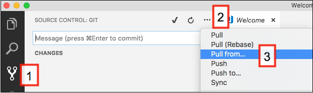 Pull all changes from the Git repo by 1) click Source Control icon, 2) click More Actions icon, and then 3) select Pull from.