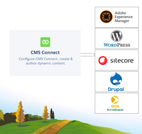 CMS Connect allows you to create content with the CMS of your choice, including Adobe Experience Manager, WordPress, Sitecore, Drupal, SDL Tridion