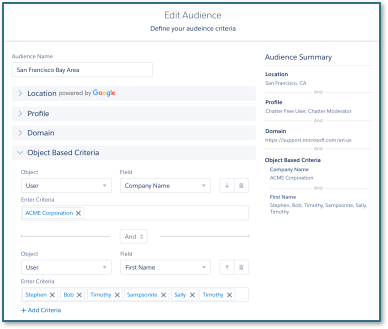 Set up Audience Targeting in Salesforce