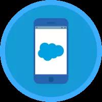 Salesforce Mobile App Customization badge icon.