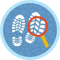 Search Solution Basics badge