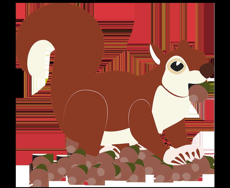 Ein Eichhörnchen mit Eicheln in der Backe