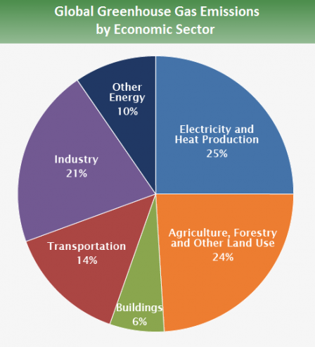 Global greenhouse gas emissions by economic sector indicate that human activity takes a toll on the environment. Moreover, specific industries that enable our modern way of living, such as electricity and heat production and agricultural land use, account for almost 50% of all global greenhouse gas emissions.