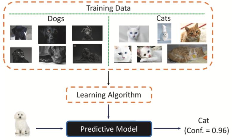 """Ilustração de dados de treinamento com fotos de seis cães pretos, quatro gatos brancos e dois gatos marrons alimentados em um algoritmo de aprendizado para um modelo preditivo. O modelo categoriza o cão branco como um """"gato"""" com pontuação de confiança de 0,96."""