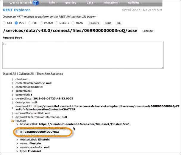 Um ID do fileAsset no Workbench