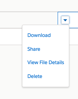 Dropdown menu for download, share, view file details, and delete