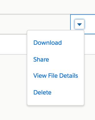 [ダウンロード]、[共有]、[ファイルの詳細を表示]、[削除] のドロップダウンメニュー