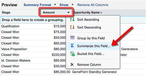 Amount and Summarize this field highlighted