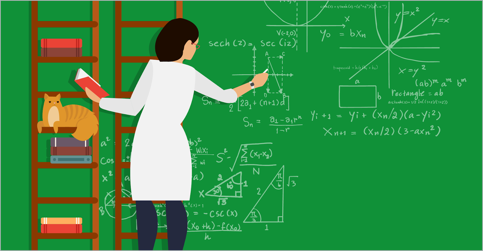 Sarah the mathematician stands on a ladder, solving a complex math problem on a huge chalkboard. Pickles the cat watches from another ladder.