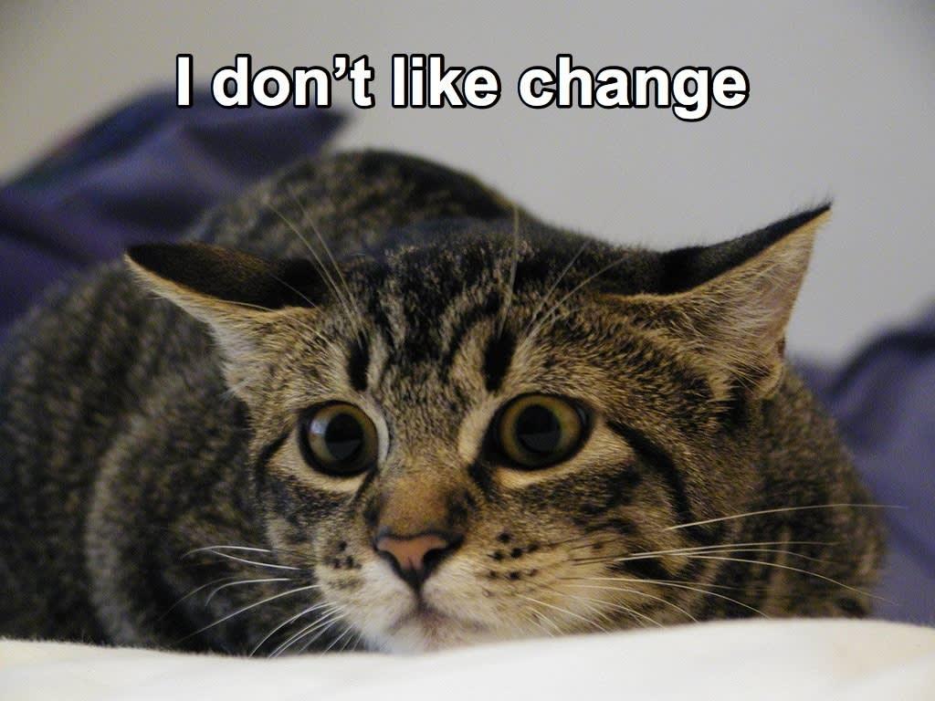 Bild einer ängstlichen Katze mit der Beschriftung 'I don't like change' (ich mag keine Veränderungen)
