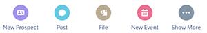 Salesforce1 アクションバーの [New Prospect (新規見込み客)] アクションのスクリーンショット