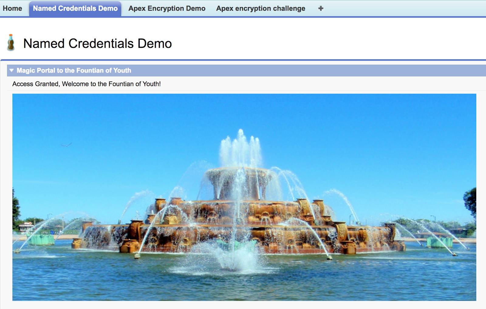 Screenshot showing a successful connection to the fountain via the portal