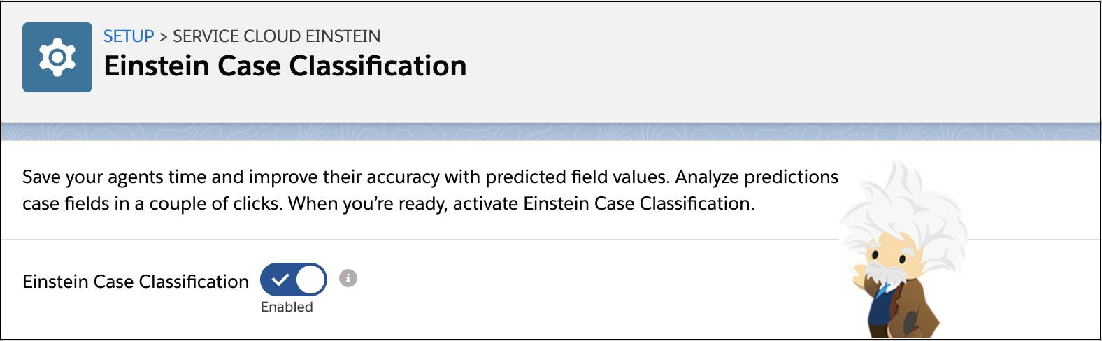 Einstein Case Classification Setup page with feature enabled