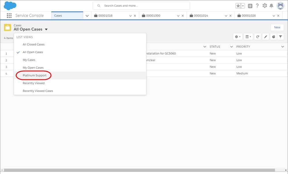 [ビュー] ドロップダウンから [Platinum Support (プラチナサポート)] が選択されている [ケース] タブのスクリーンショット。