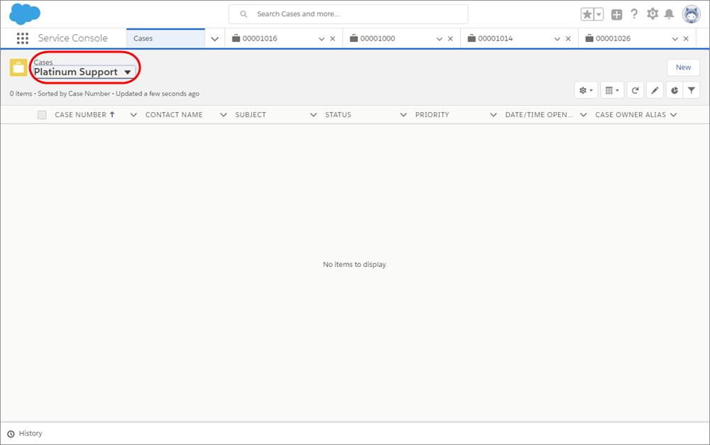 [ケース] タブに表示された [Platinum Support (プラチナサポート)] の空のビューのスクリーンショット。