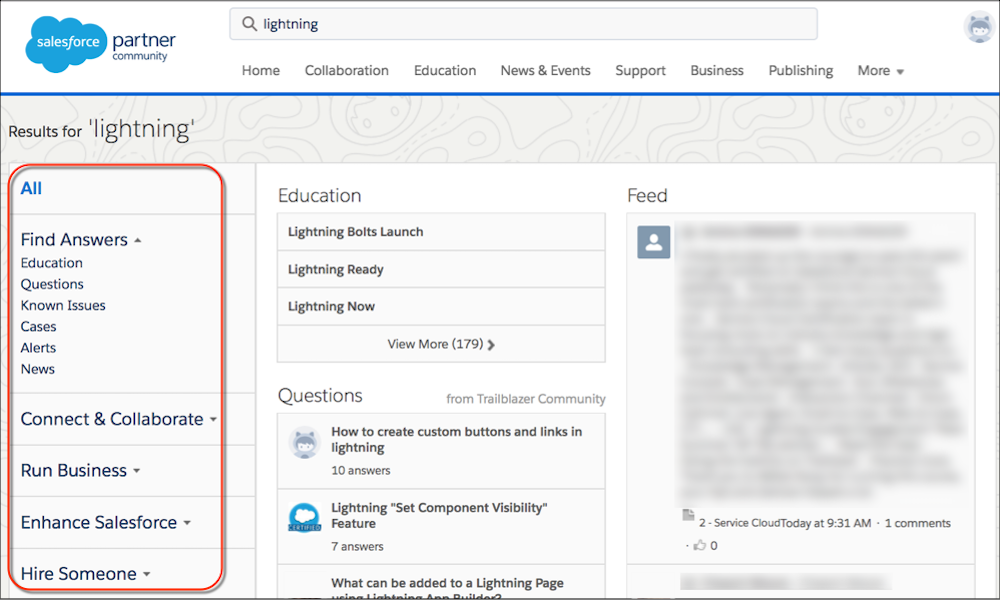 Search results categories on the Salesforce Partner Community site.