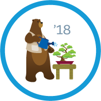 Spring '18 Release Highlights badge