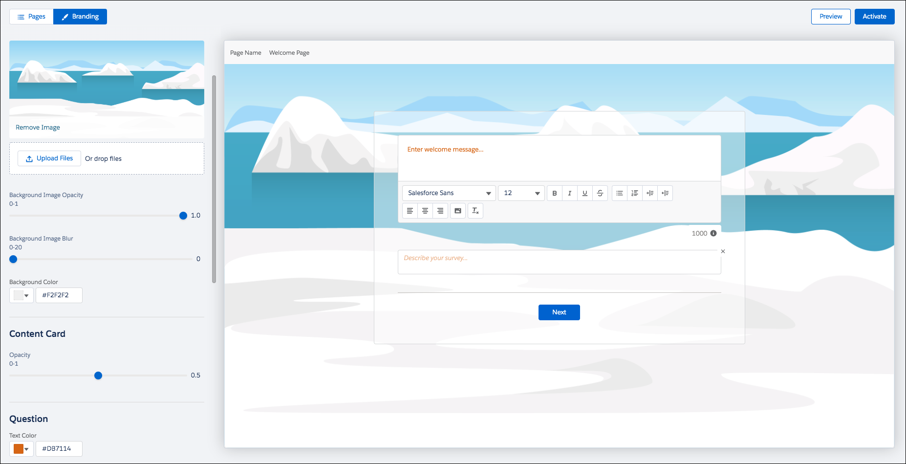 Survey Builder with the Style icon selected displaying a custom desert picture.