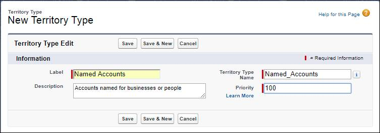 [設定] の [新規テリトリー種別] ページ。「Named Accounts (指定取引先)」テリトリー種別と「100」という優先度を保存可能な状態になっています。