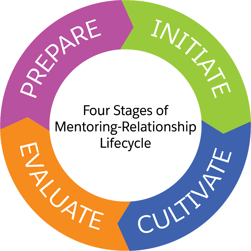 A circle depicting the four stages of the mentoring lifecycle: prepare, initiate, cultivate, and evaluate.