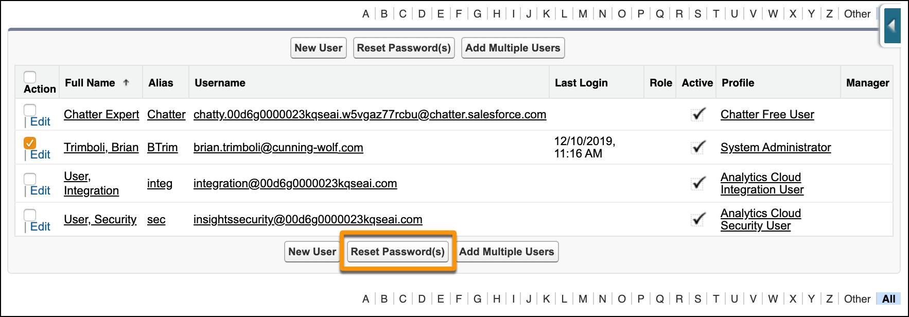 The list of users in Setup with the Reset Password(s) button called out.